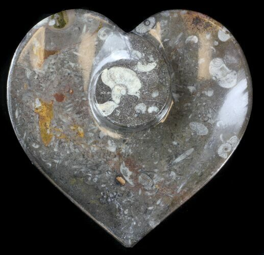 "6"" Heart Shaped Fossil Goniatite Dish"