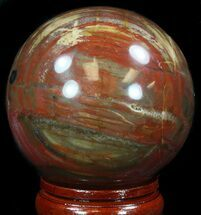 "3.05"" Colorful Petrified Wood Sphere For Sale, #36956"