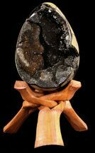 "Buy 5.6"" Septarian ""Dragon Egg"" Geode - Crystal Filled - #37300"