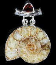 Buy Ammonite Fossil Pendant - Sterling Silver - #38080