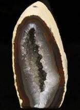 Agate - Fossils For Sale - #38217