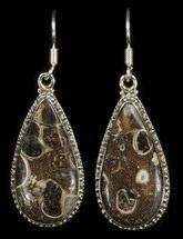 Fossil Turritella (Gastropod) Earrings - Sterling Silver For Sale, #38120