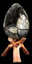Septarian with Calcite  - Fossils For Sale - #38406