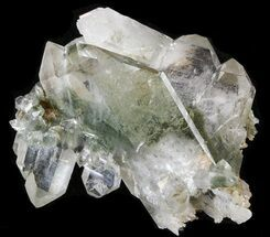 Faden Quartz with Chlorite - Fossils For Sale - #38619