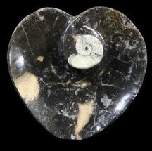 "4.5"" Heart Shaped Fossil Goniatite Dish For Sale, #39293"