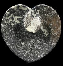 "Buy 4.5"" Heart Shaped Fossil Goniatite Dish - #39355"