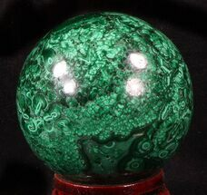 "Buy Gorgeous 2.5"" Polished Malachite Sphere - Congo - #39400"