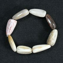 Polished Oregon Petrified Wood Bracelet For Sale, #40832