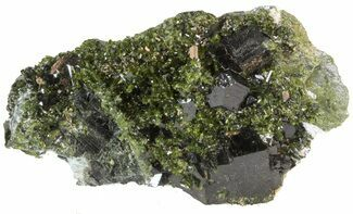 "Buy Lustrous 2.4"" Epidote Crystal Cluster with Actinolite - Pakistan - #41584"