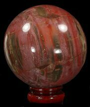 "Buy 3.6"" Colorful Petrified Wood Sphere - #41959"