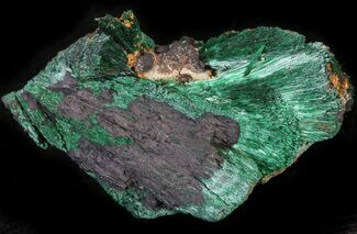 "Buy 1.4"" Silky, Fibrous Malachite Crystals - Morocco - #42019"