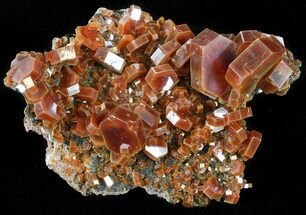"Buy 2.2"" Deep Red Vanadinite Crystals on Matrix - Morocco - #42196"