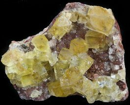 "2.0"" Lustrous, Yellow Cubic Fluorite Crystals - Morocco  For Sale, #44903"