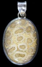Buy 20 Million Year Old Fossil Coral Pendant - Sterling Silver - #49558