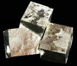 Pyrite - Fossils For Sale - #50205
