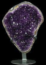 Quartz var. Amethyst - Fossils For Sale - #51297