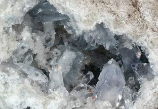 Celestite - Fossils For Sale - #52521