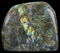 "7"" Flashy Polished Free Form Labradorite - 8 3/4 lbs For Sale, #51536"