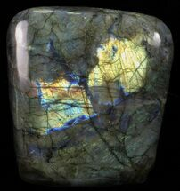 Labradorite - Fossils For Sale - #56091
