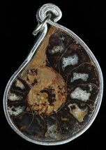 Moroccan Ammonite Fossil Pendant For Sale, #58394