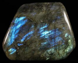 Labradorite - Fossils For Sale - #59088