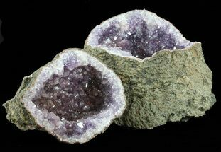 Quartz var Amethyst  - Fossils For Sale - #60009