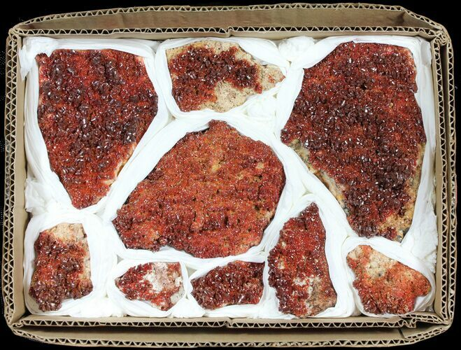 Ruby Red Vanadinite Crystals on Barite Wholesale Lot - 9 Pieces