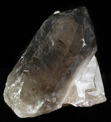 "3.5"" Smoky Quartz Crystal - Brazil"