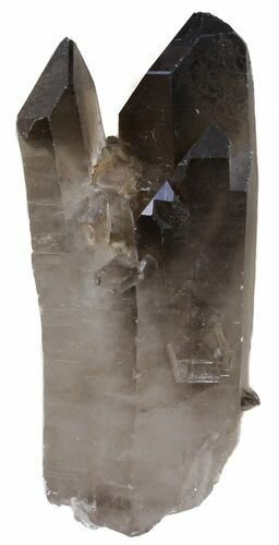 "2.8"" Smoky Quartz Crystal - Brazil"