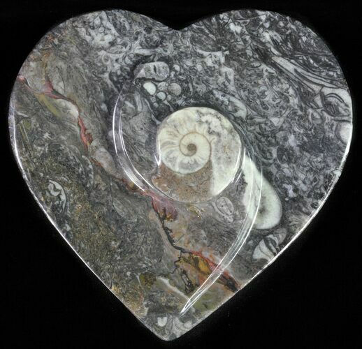 "4.5"" Heart Shaped Fossil Goniatite Dish"