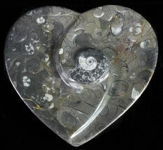 "4.5"" Heart Shaped Fossil Goniatite Dish For Sale, #61280"