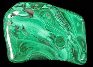 "4.1"" Polished Malachite - Congo For Sale, #63746"