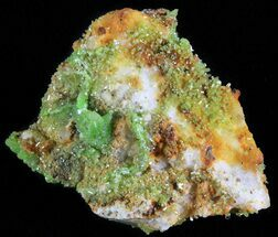 Pyromorphite - Fossils For Sale - #63675
