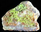 "2"" Pyromorphite Crystal Cluster - China - #63683-1"