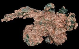 "Buy 6.2"" Natural, Native Copper Formation - Michigan - #64765"