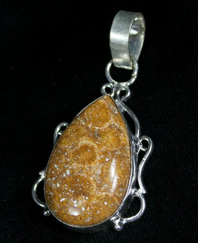 Tear Drop Shaped Fossil Coral Pendant