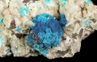 Vibrant Blue Cavansite Clusters on Stilbite - India For Sale, #64814