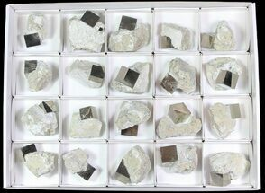 Pyrite - Fossils For Sale - #65670