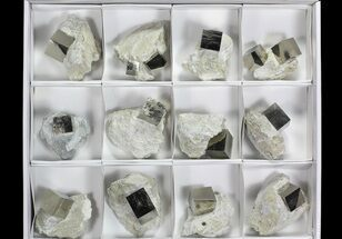Large, Pyrite Cubes In Rock From Spain (Wholesale Flat)  - 12 Pieces For Sale, #65678