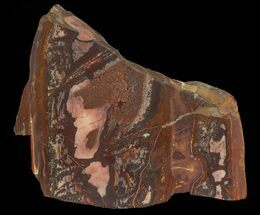 "Buy 4.8"" Polished Outback Jasper - Western Australia - #65644"