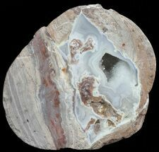 "Buy 2.4"" Crystal Filled Dugway Geode (Polished Half) - #67486"