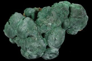 "1.8"" Botryoidal Malachite Crystal Formation - Congo For Sale, #67451"