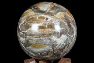"3.9"" Colorful Petrified Wood Sphere - Madagascar For Sale, #67766"