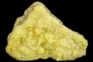 "Buy 2.6"" Sulfur Crystal Cluster on Matrix - Nevada - #69157"