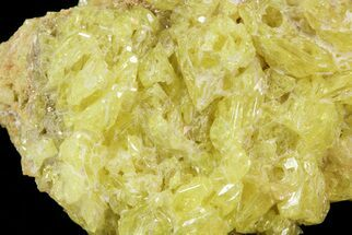"1.9"" Sulfur Crystal Cluster on Matrix - Nevada For Sale, #69155"
