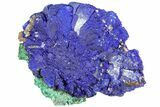 "1.3"" Sparkling Azurite and Malachite Crystal Cluster - Morocco - #73421-1"