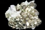 "2.6"" Gleaming Pyrite Crystal Cluster with Quartz - Peru - #72589-1"