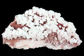 "13.5"" Pink Halite Crystal Plate - Trona, California For Sale, #72281"