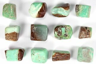 Bulk Polished Chrysoprase - 8oz. (~ 20pc.) For Sale, #75668