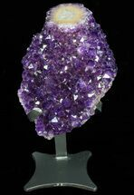 Quartz var. Amethyst - Fossils For Sale - #76818